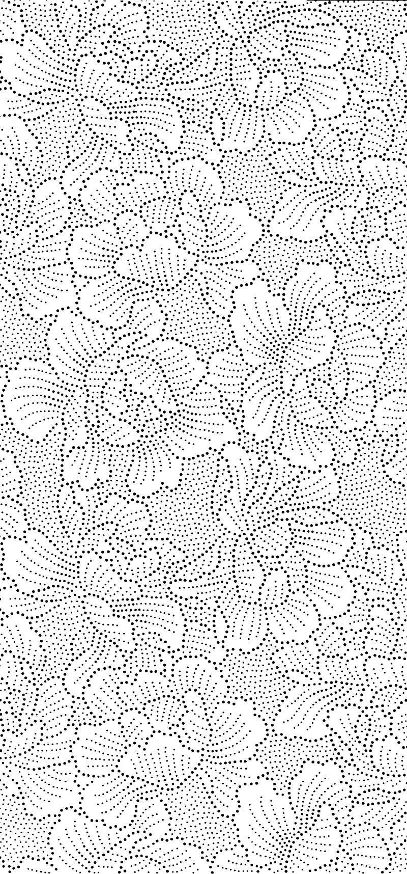 png800katagamipeonycolor3.png