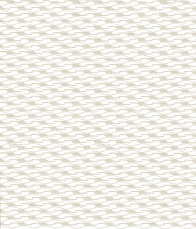 png800katagamiripplecolor2.png