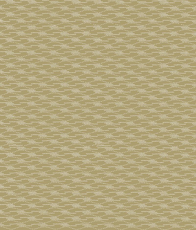 png800katagamiripplecolor5.png