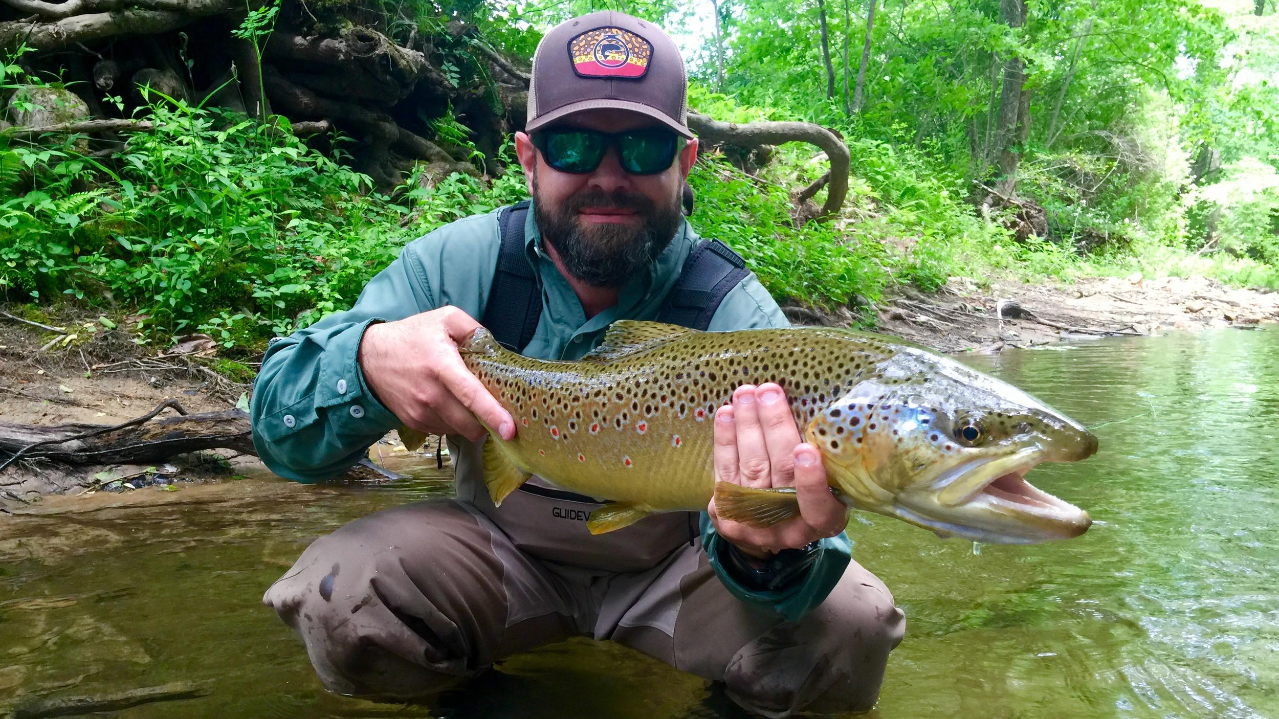 monster-brown-trout2.jpg