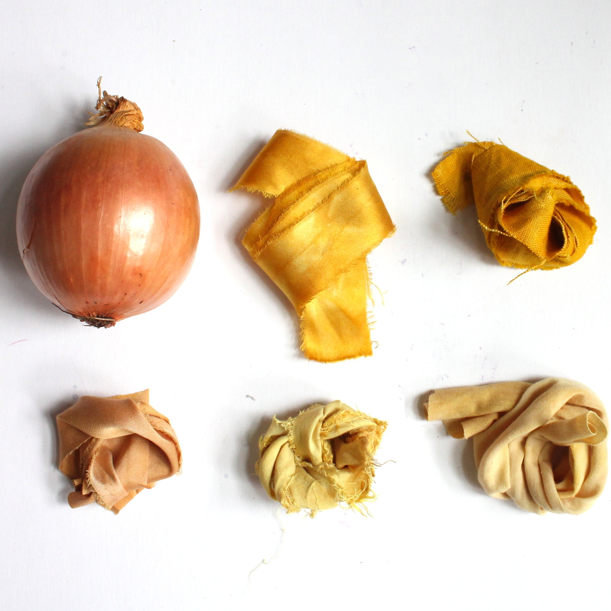 Yellow Onion Skins  The skins of a yellow onion make varying shades of yellow and gold.
