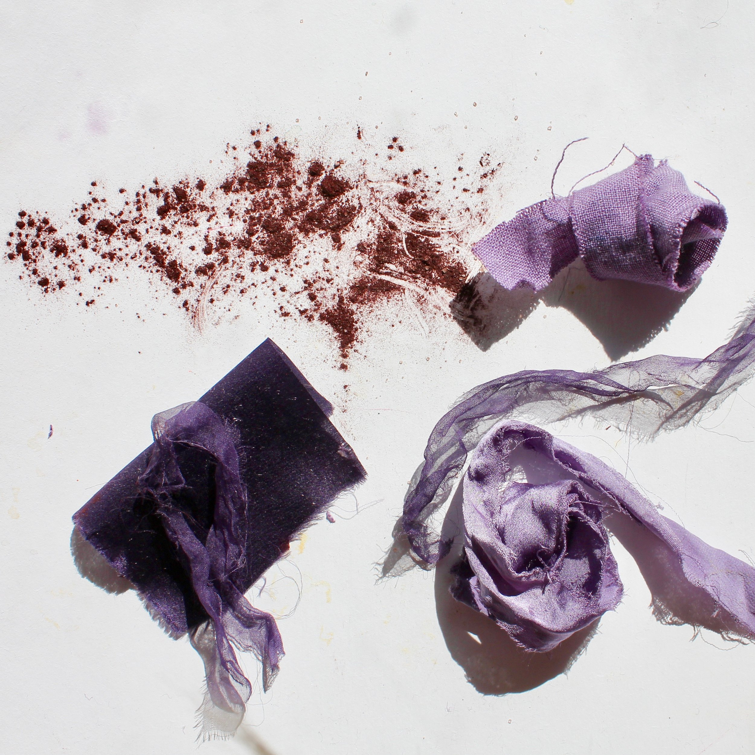 Logwood  Logwood dye comes from the heartwood of the tropical Logwood Tree. It yields many shades of purple, from lilac to a deep plum.