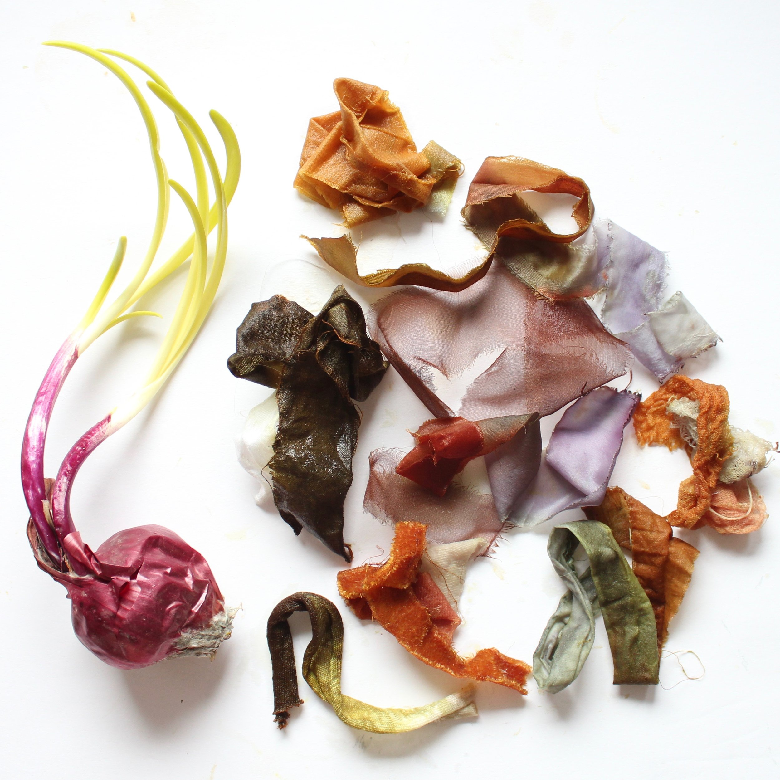 Red Onion Skins  The skin of a red onion can create a whole spectrum of color from chartreuse to army greens, lavender to rust.