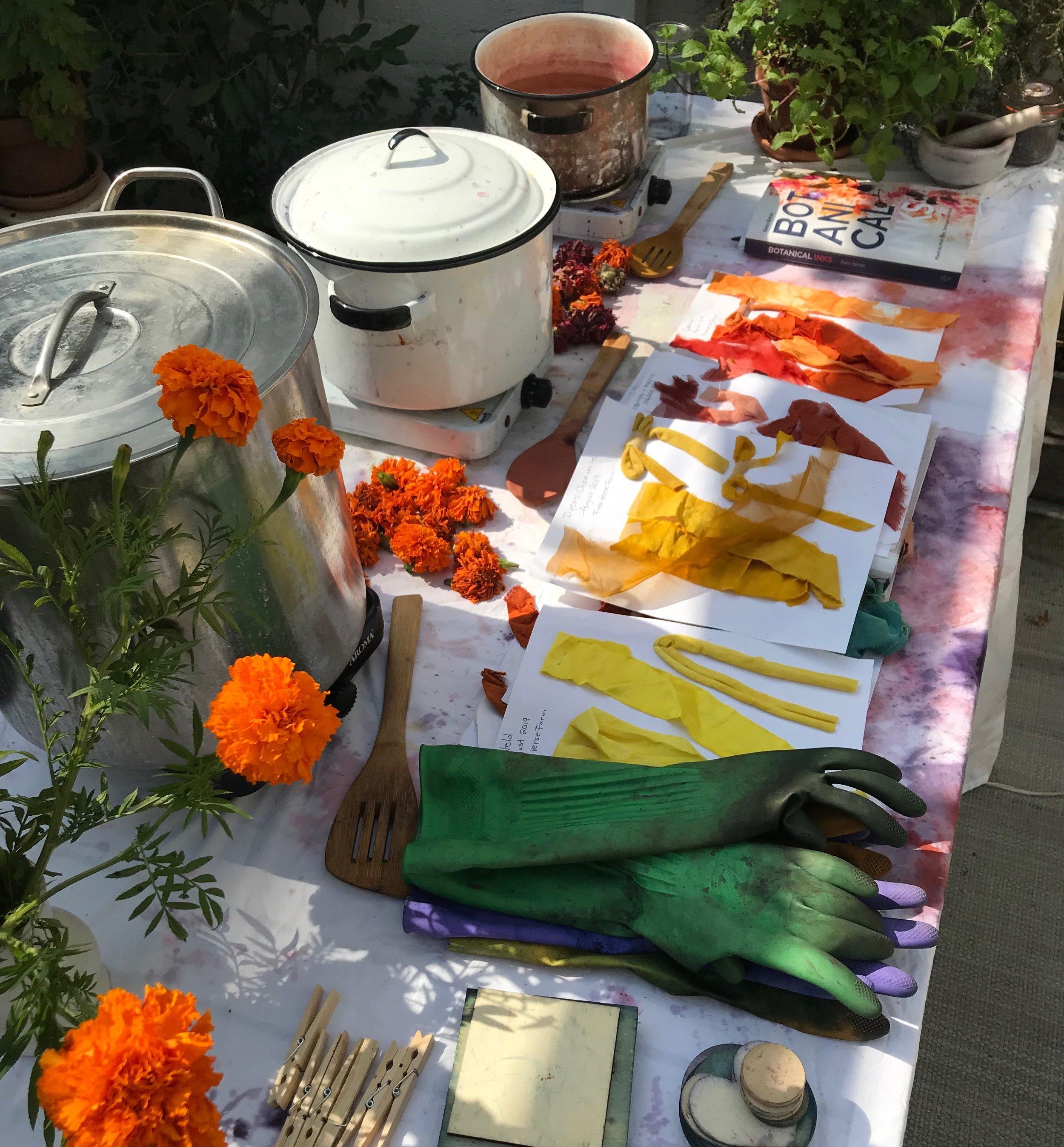 paper fashion natural dye table.JPG