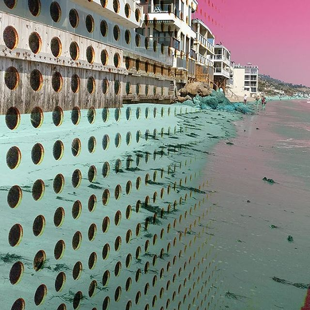 Plastic Oceans 🐳🐋🐳 #artist #collage #artistsoninstagram #bealamar #ocean #conservation #reducewaste #oceanconservation #marineconservation #stopsucking  #wildlife #plasticpollution #plasticocean #marinelife #waterislife #sustainability #conceptualisme