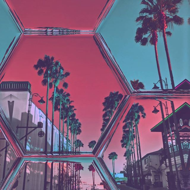 Hollywood vibes #palmtrees #hollywood #windows #art