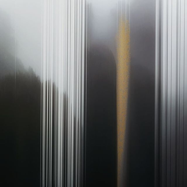 Cloud forest highway feels 🌪️ #forest #chalk #colourstudy #preservation  #yellowline #climatechange #cloudforest #fog # magic #drive #soclose  #showyourcolours #savetheforest #nationalpark #art #highway #road #contemporaryart #conceptualart