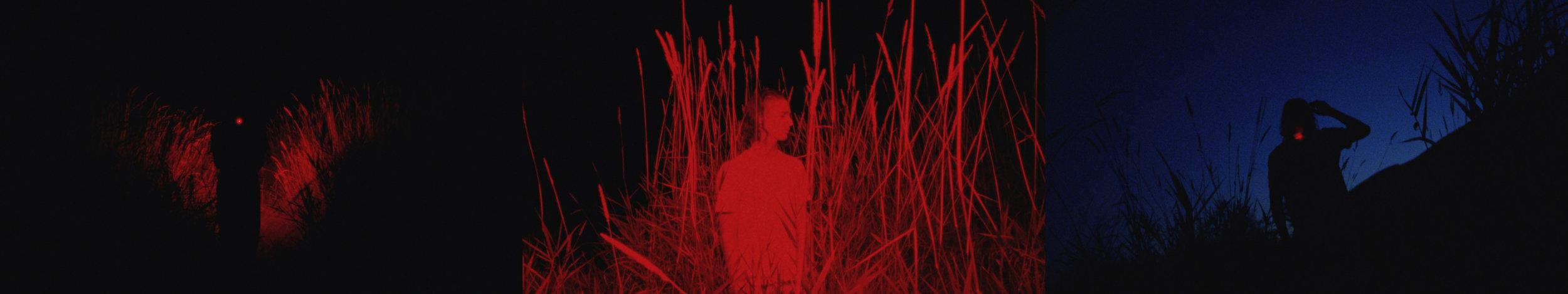 Music Video  Subconcious Self Sabotage - 1000 Petal Lotus ft. ft. Angus Tarnawsky