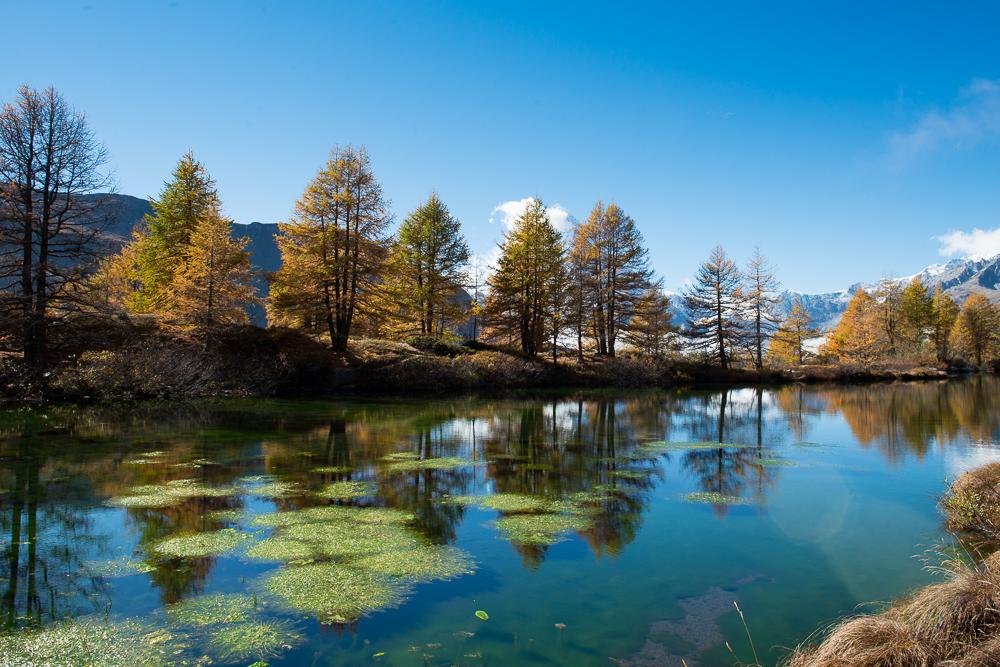 Goldener-Herbst-im-Mattertal-Nr7-(1-von-1).jpg