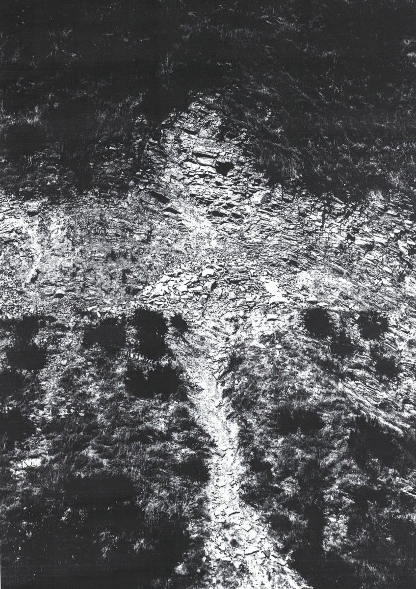 Scan 16.jpg