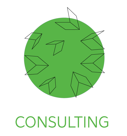 consulting-icon-1.png
