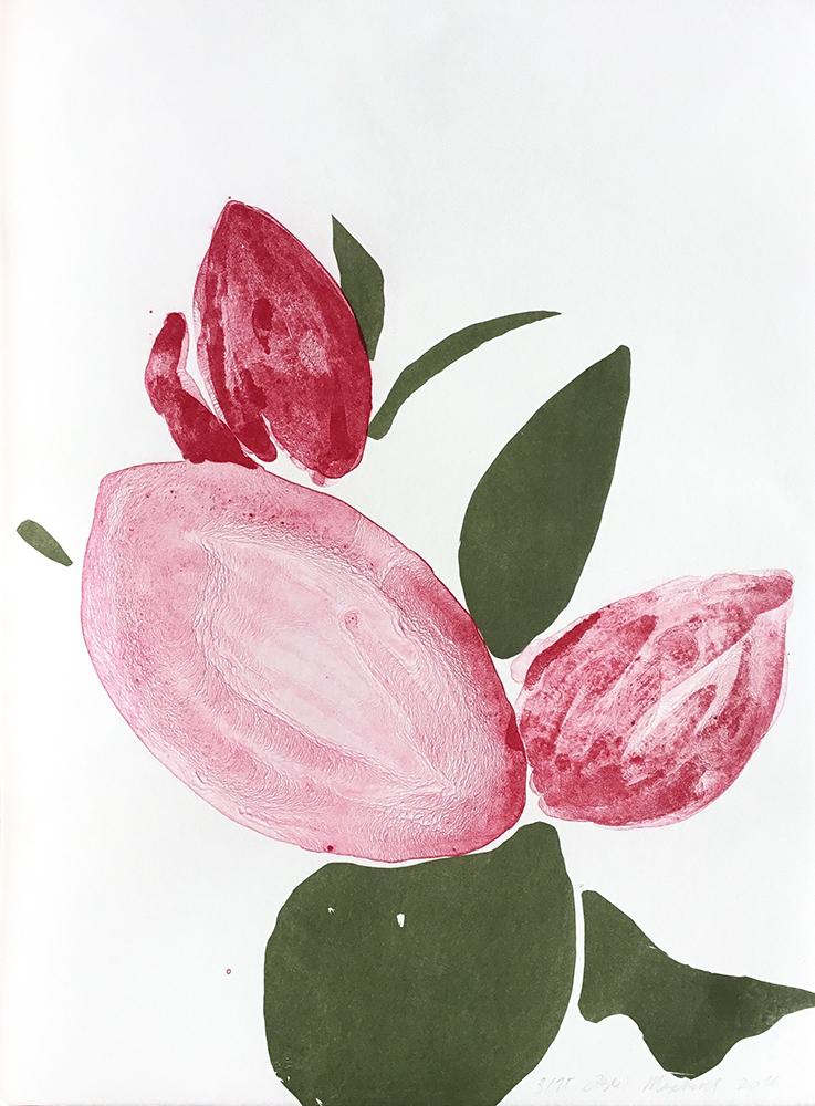 'Plant' lithograph