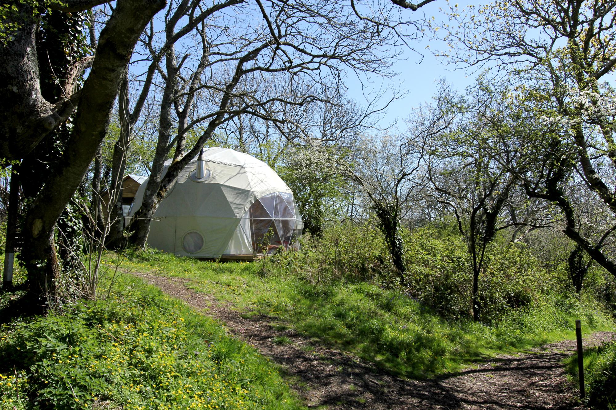 fforest Dome 7.jpg