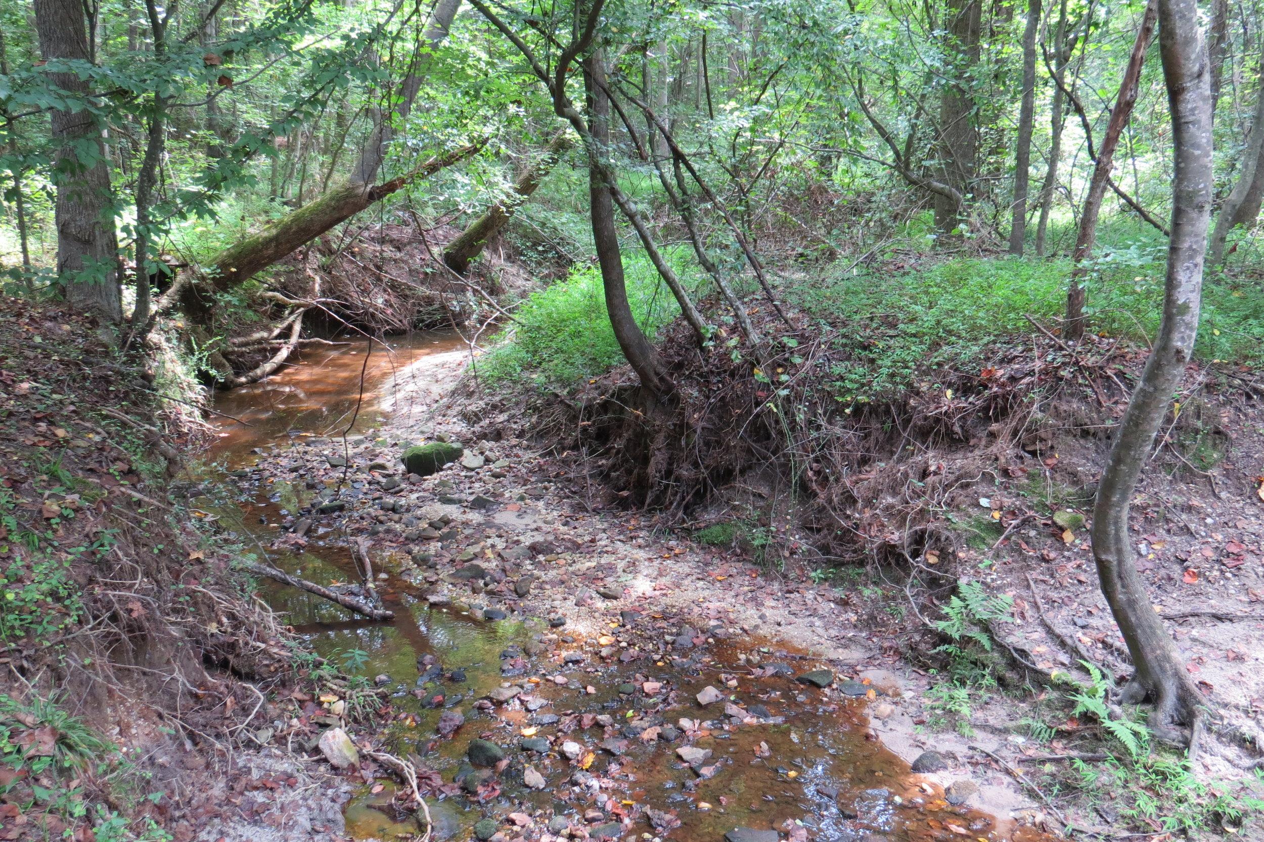 Buffalo Creek 1.JPG