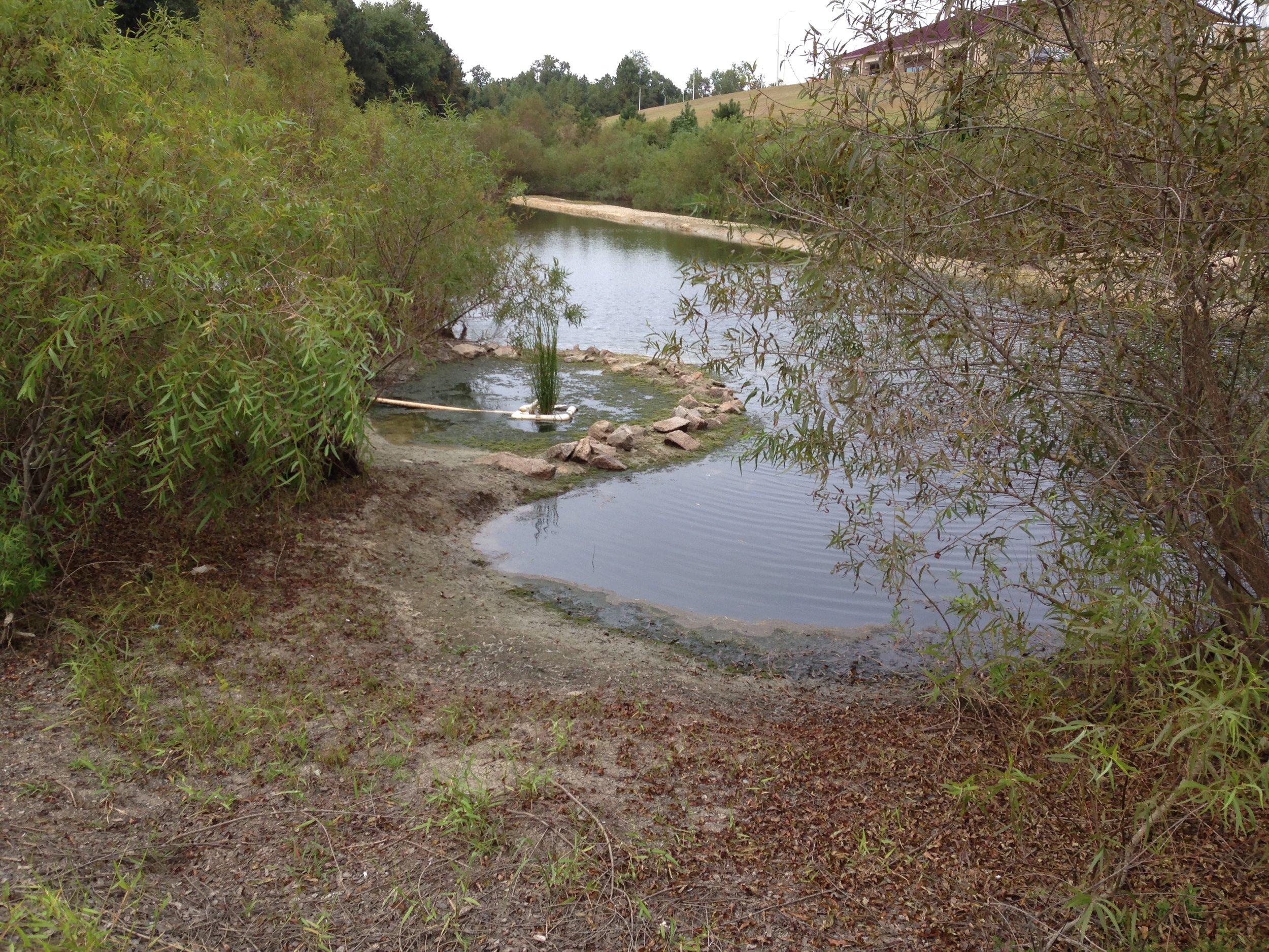 Buffalo Creek 3.JPG