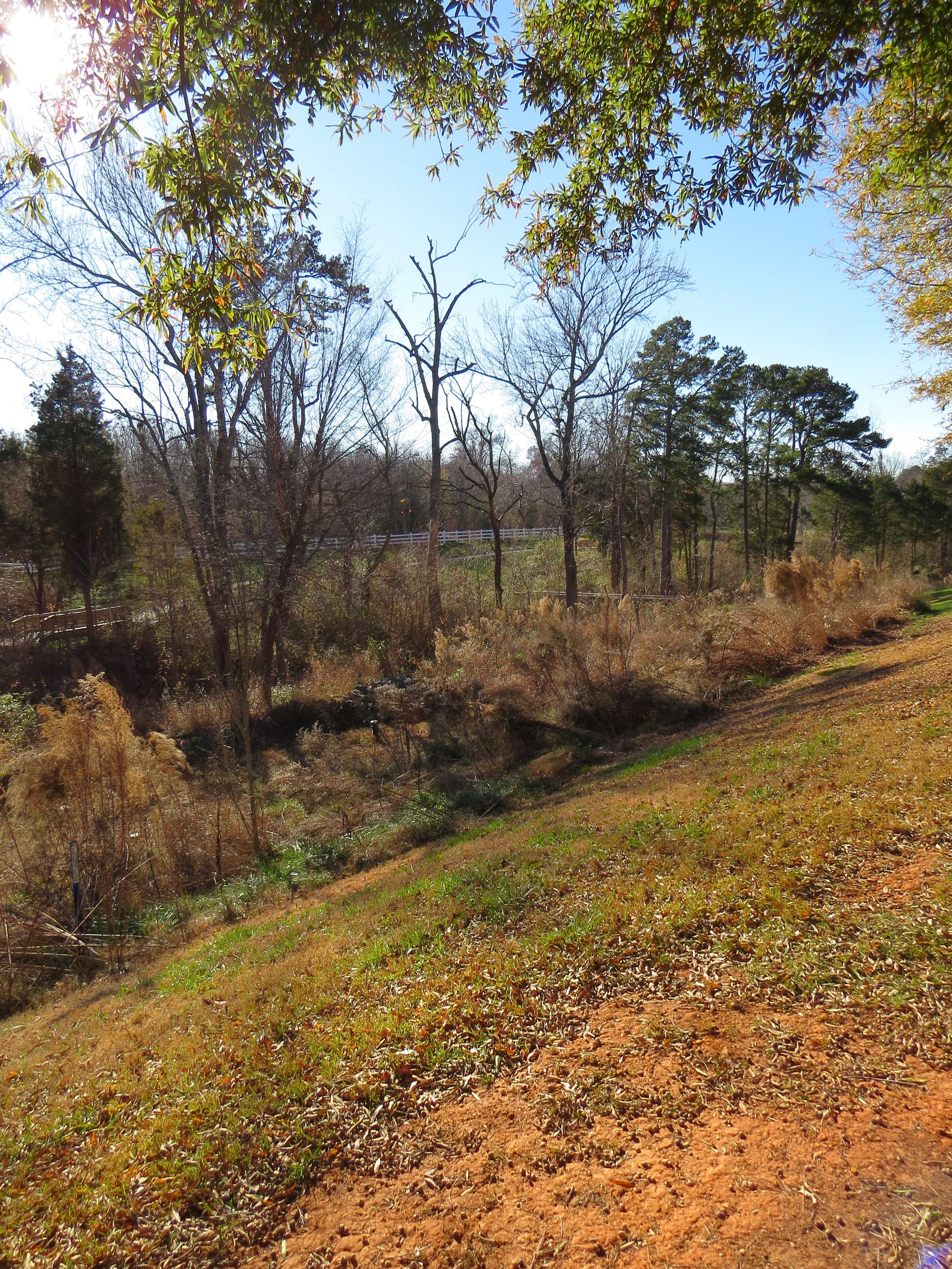 Monteith Park Mitigation Bank Mecklenburg County, North Carolina