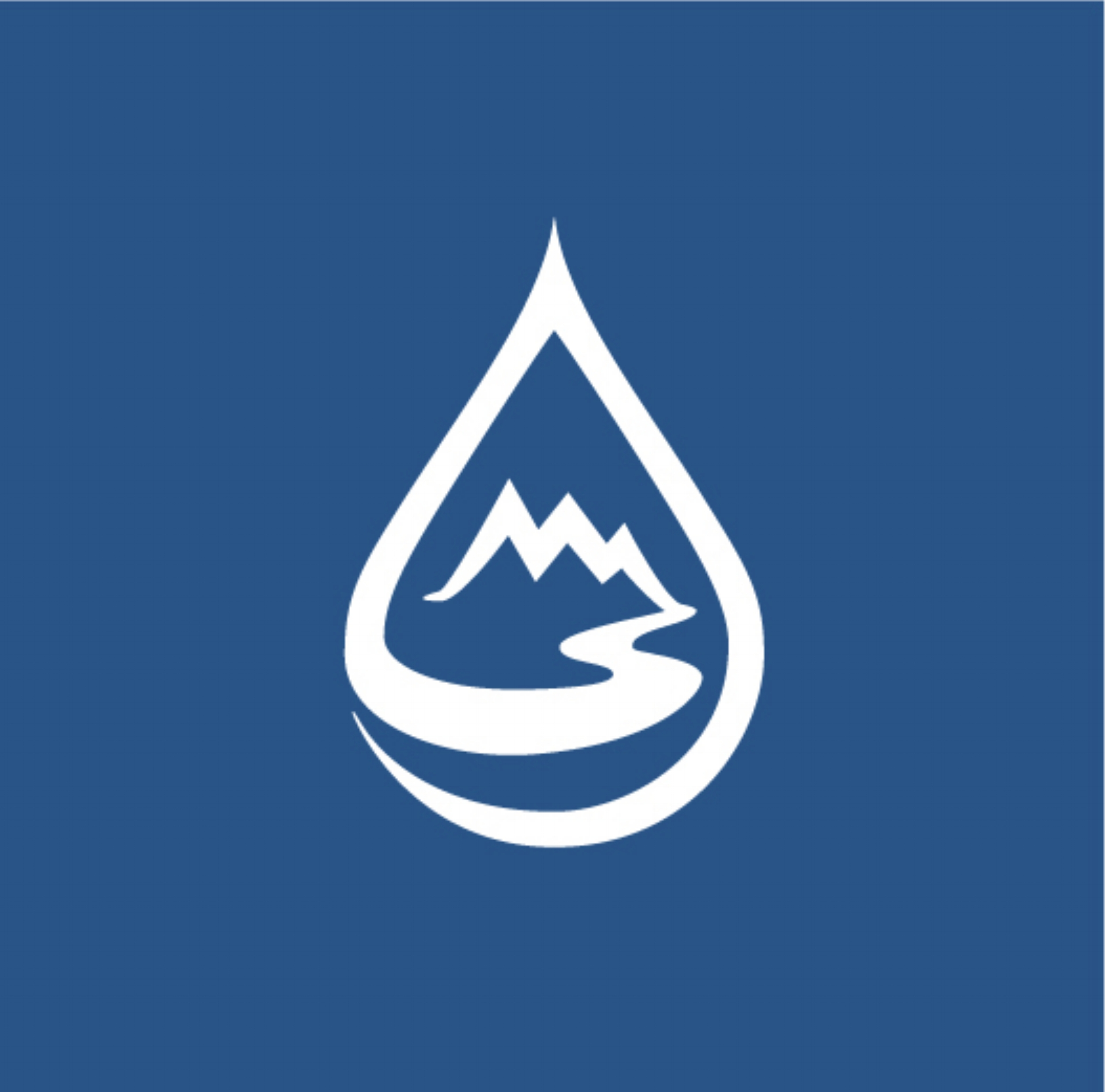 WLS_Drop__Logo-WhiteBlue.jpg