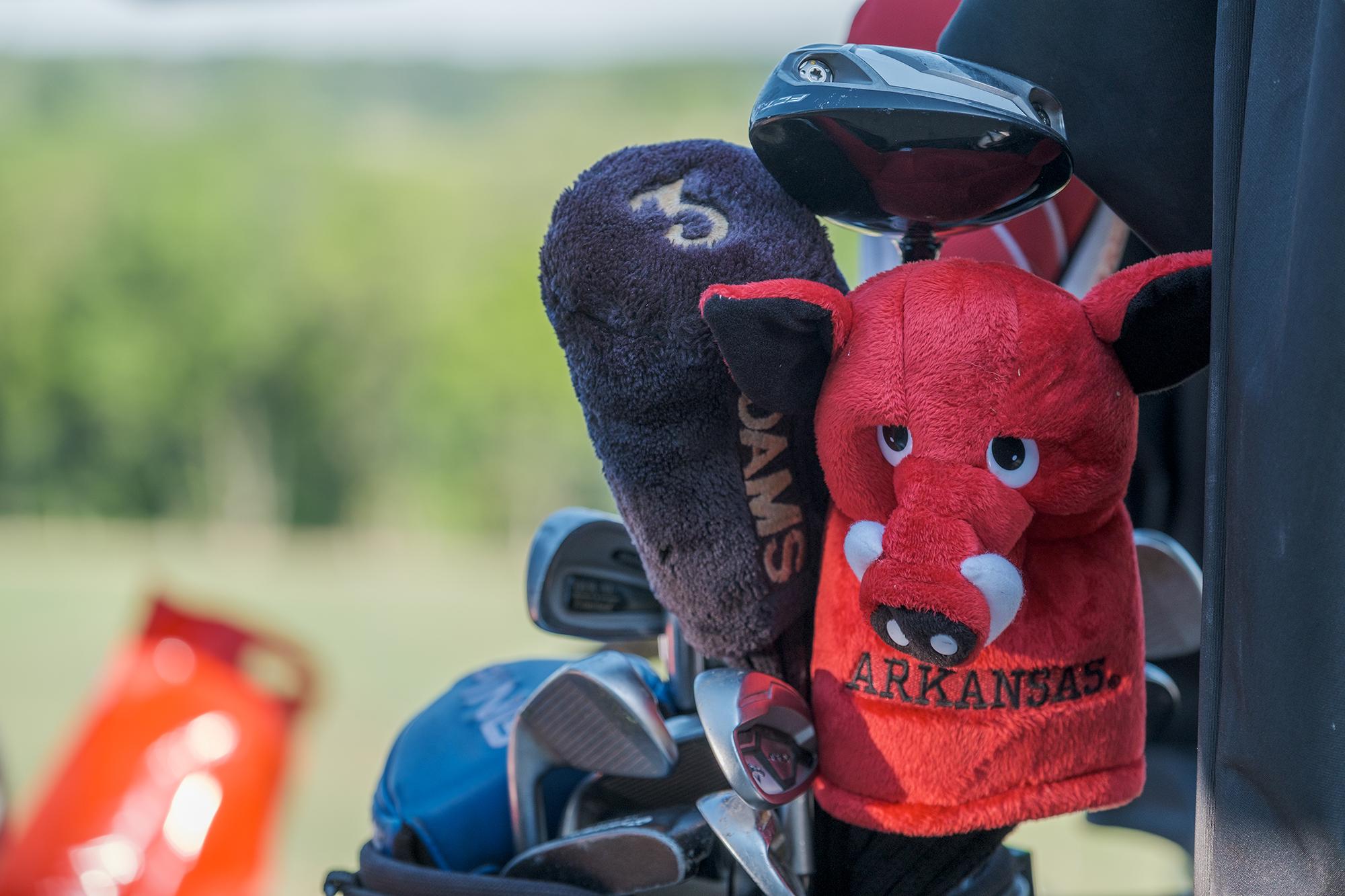 D&F Golf 0111.jpg