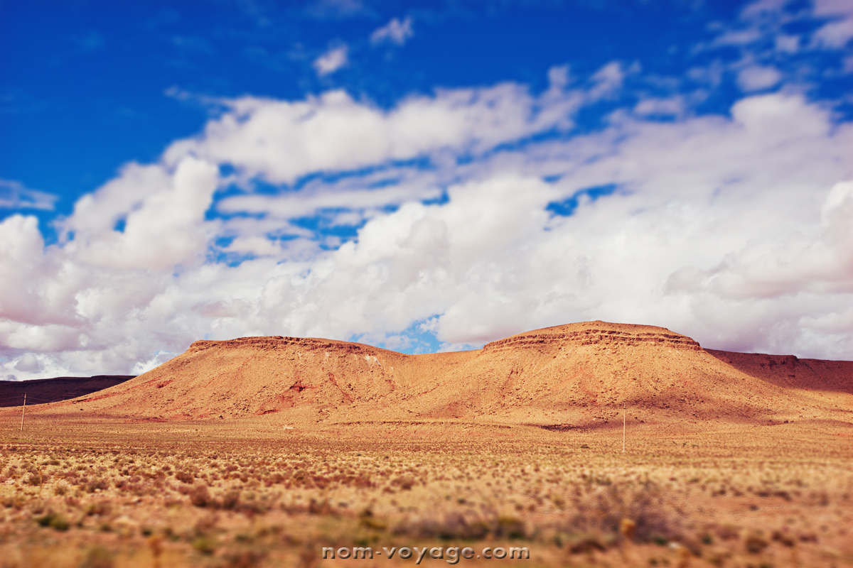 DesertTour38.jpg