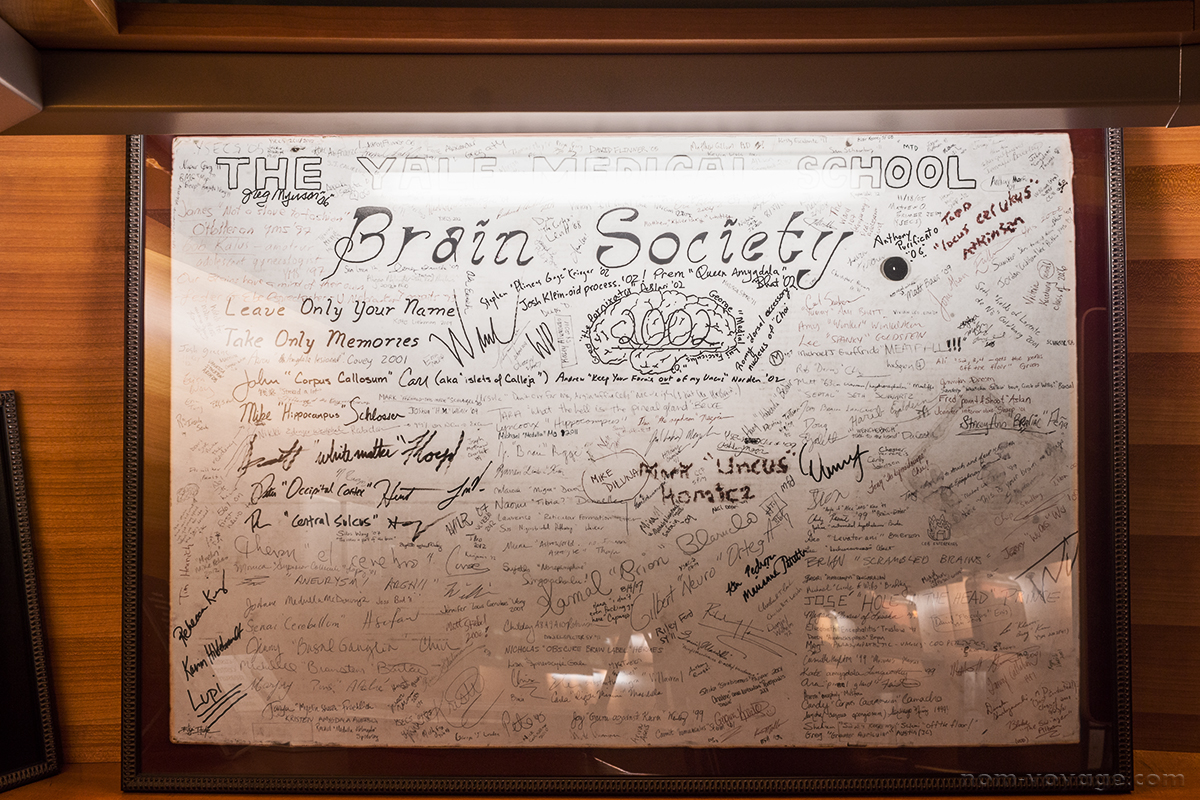 Signatures of the many members of Yale's secret Brain Society