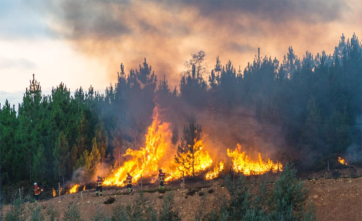 Fighting the Fire 7.jpg