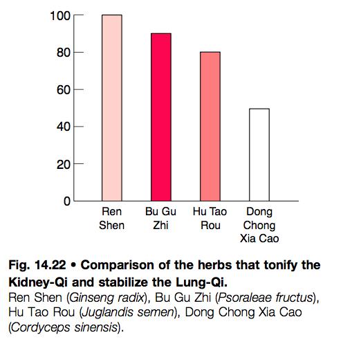 (10) Klikkaa kuva suuremmaksi ja katso Cordycepsin vaikutusten vertailua esim Ginsengiin.
