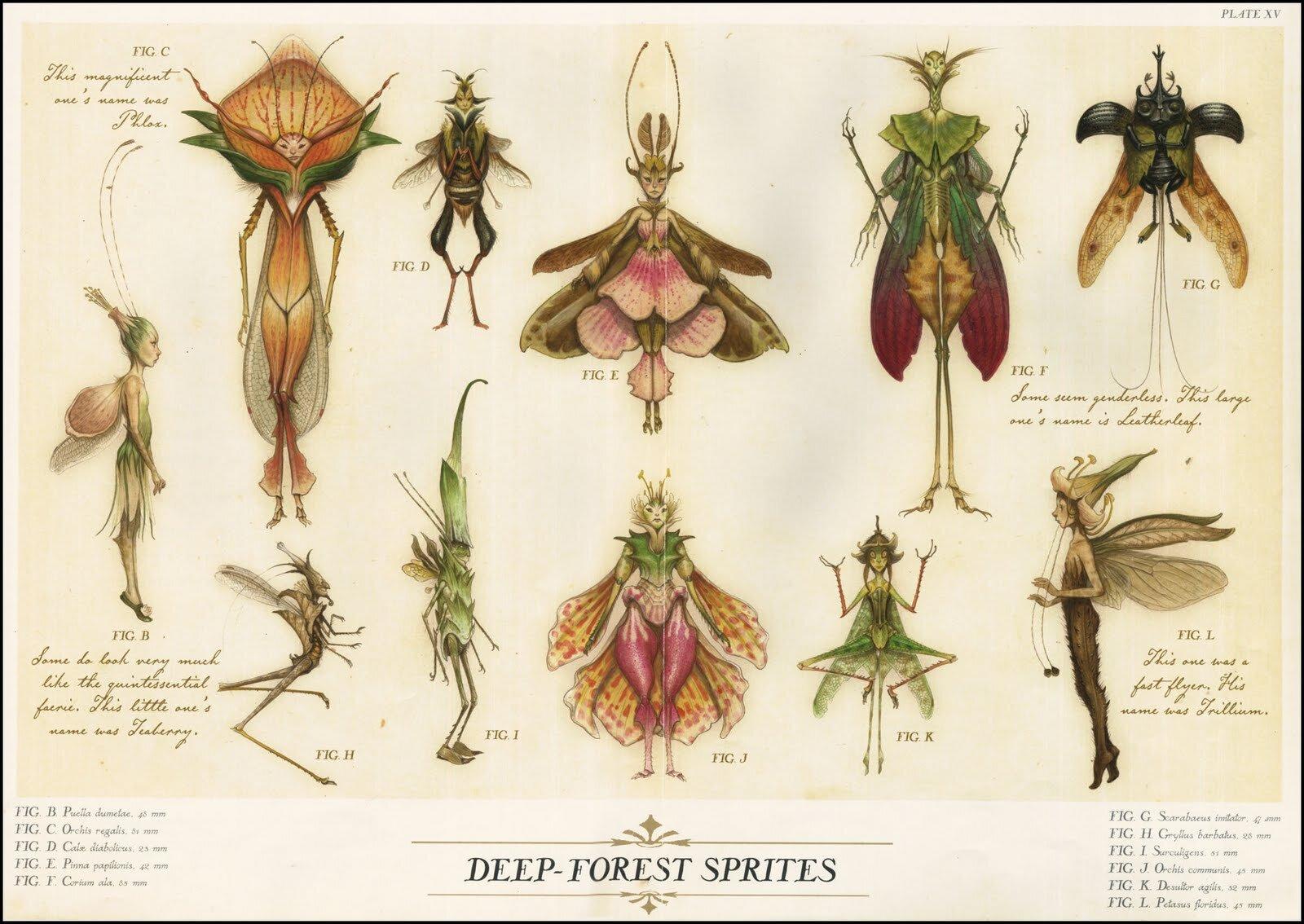 Erilaisissa kasveissa ja hyönteississä elävät mikrobien ekosysteemit sisältävät kukin oman väkensä.