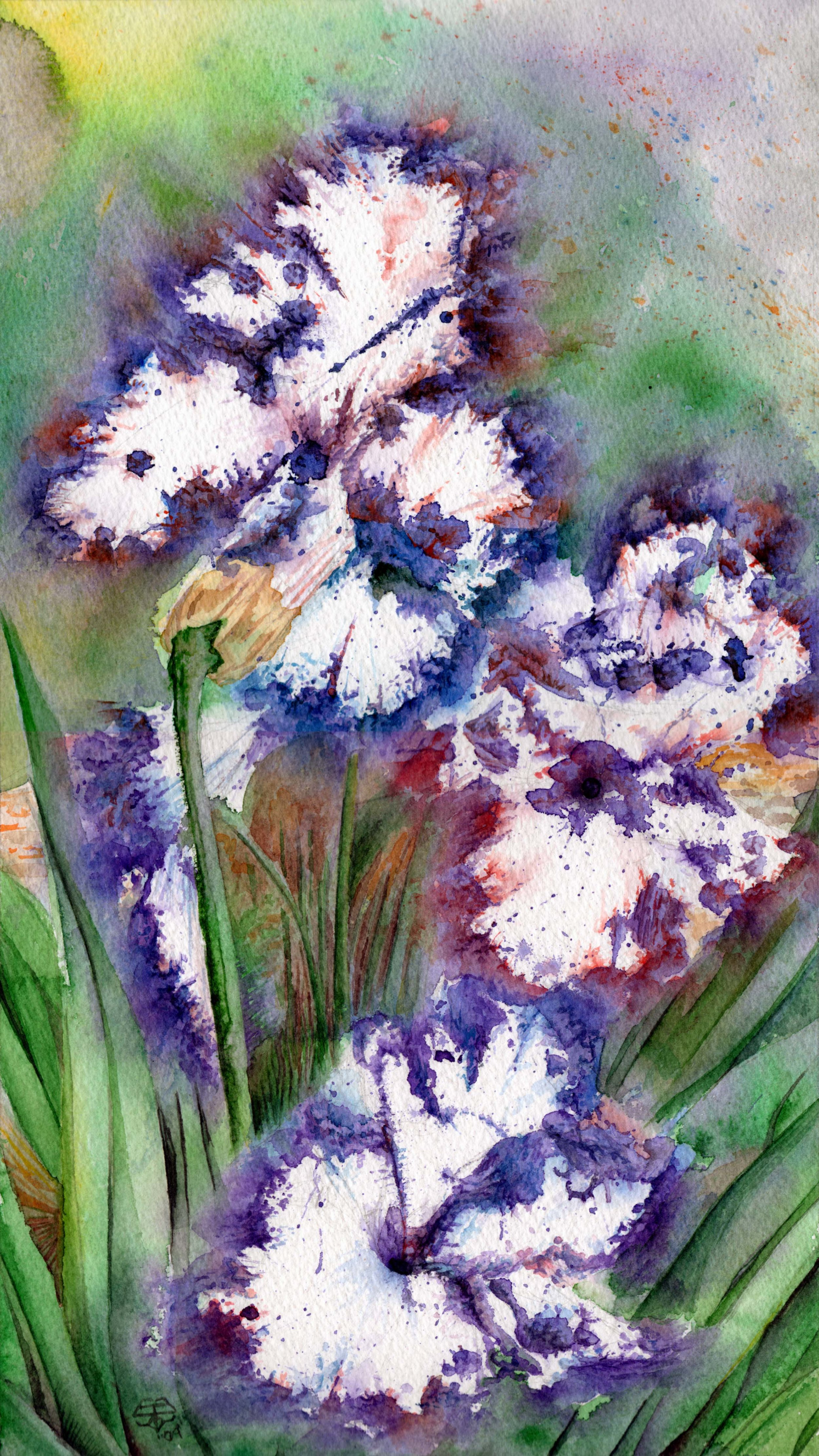 Flowers in Full Boom