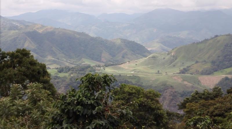 ecuador-finca-maputo-landscape.jpg