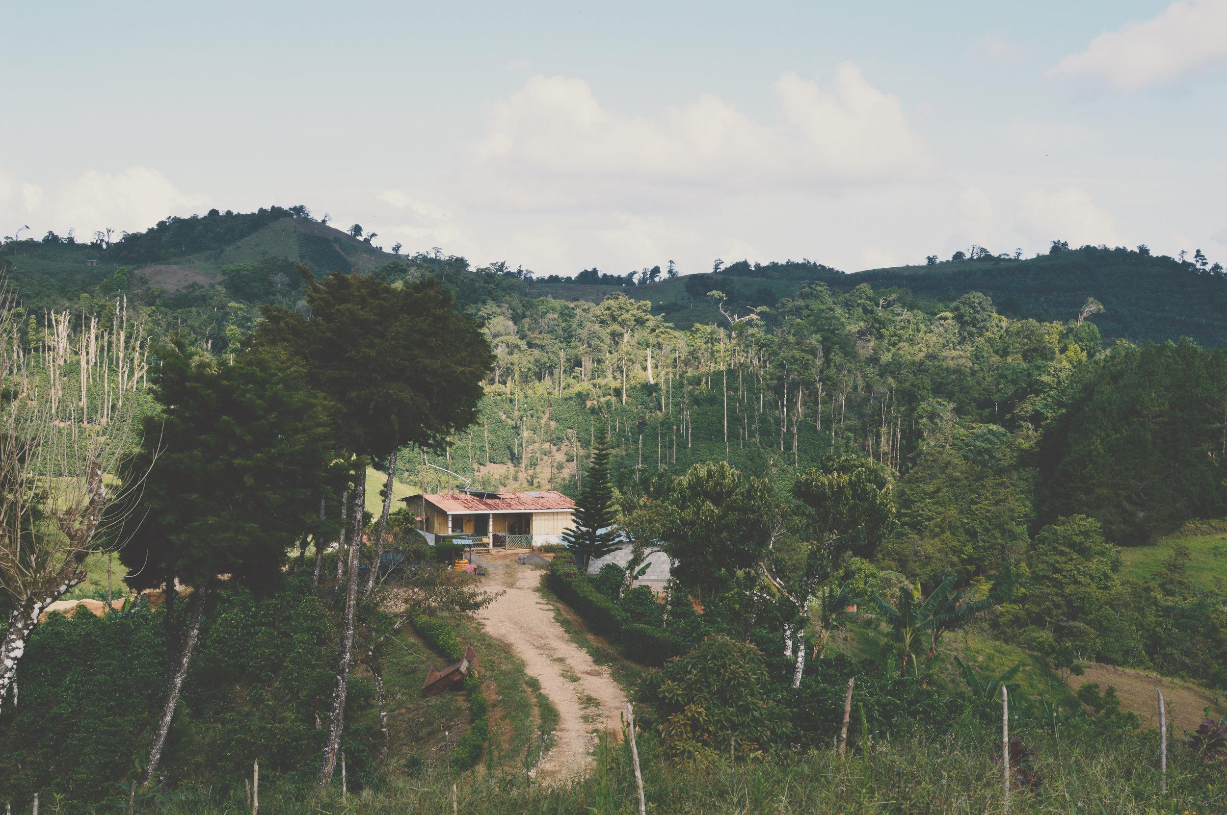 ABOUT THE FARM - FINCA SAN JOSE DE LAS NUBES