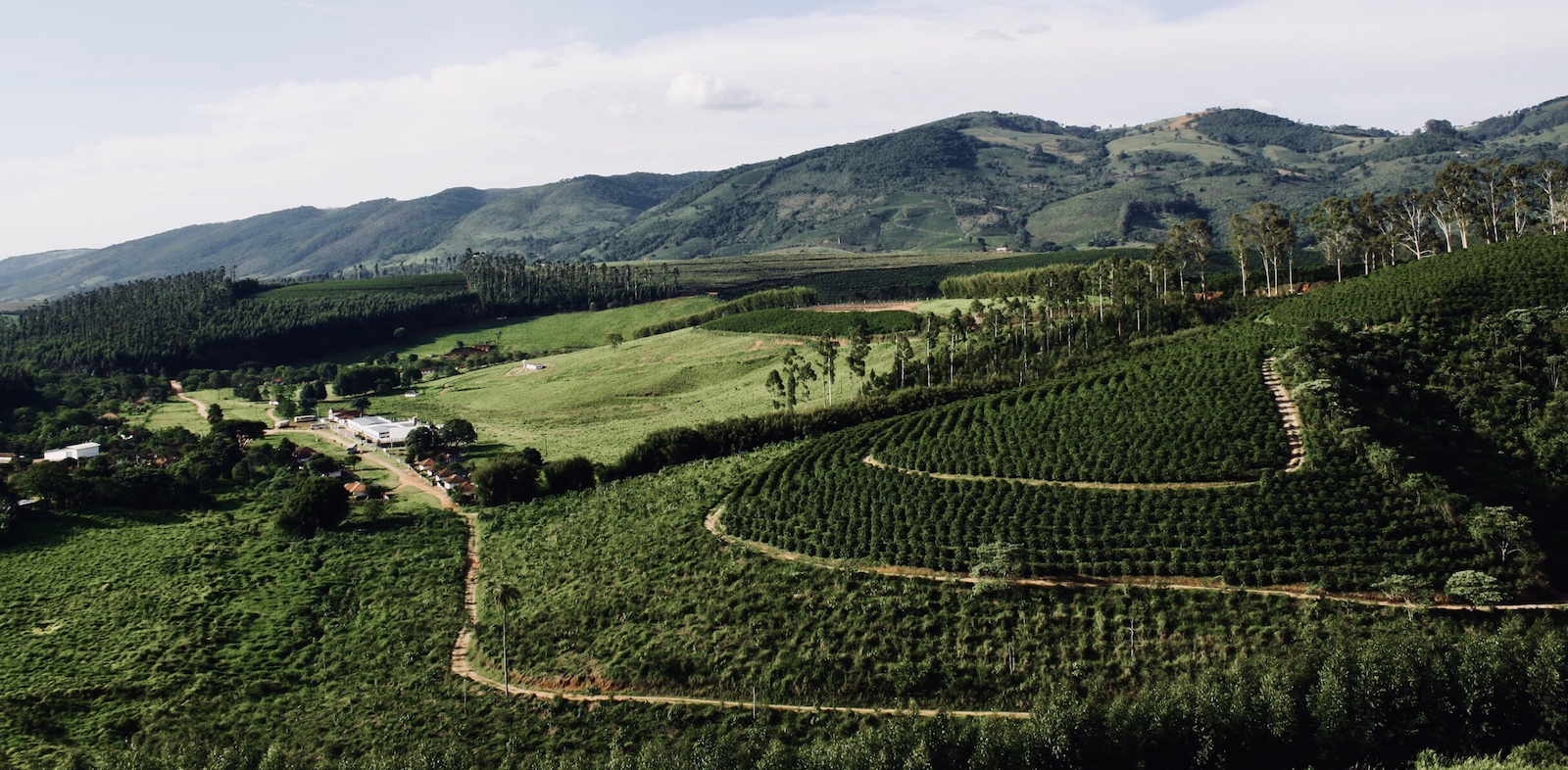 Brazil Family Farms - Fazenda Cachoeira