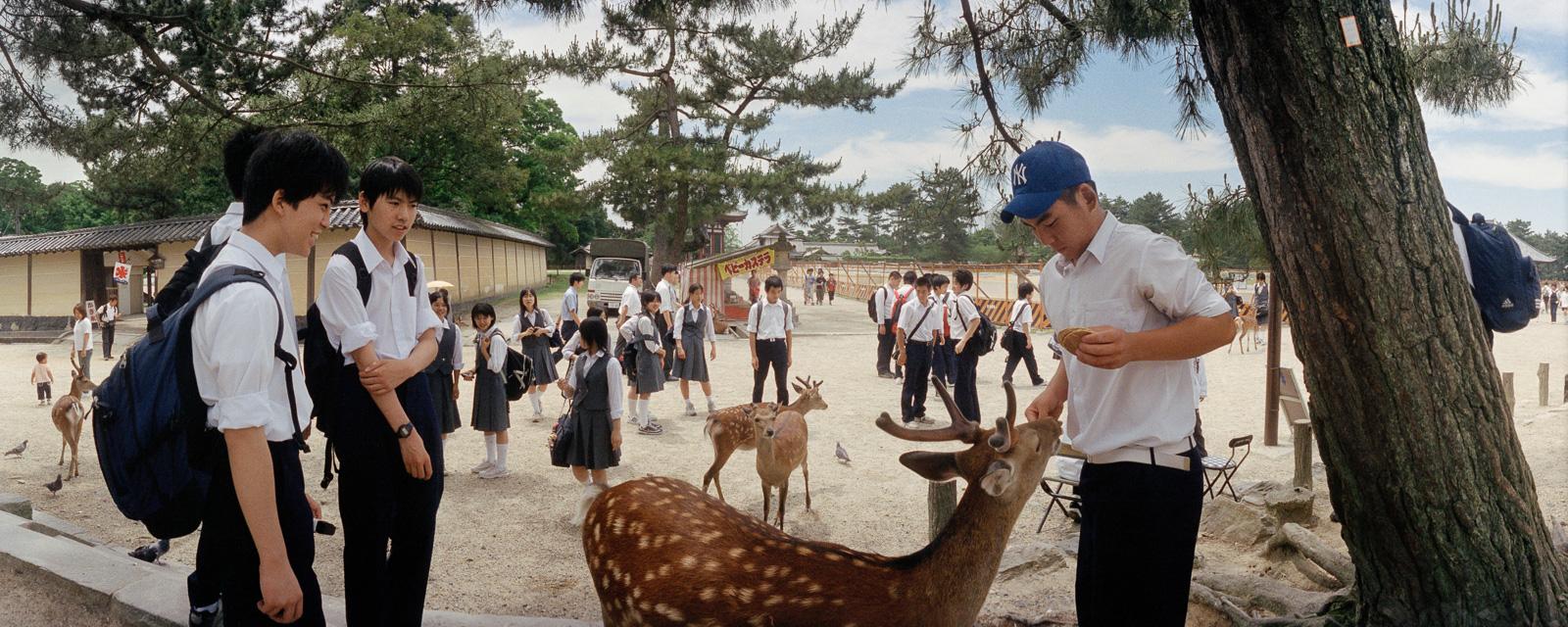 12-nara-boys-feeding-deer.jpg