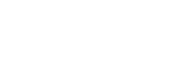 IIE logo.png