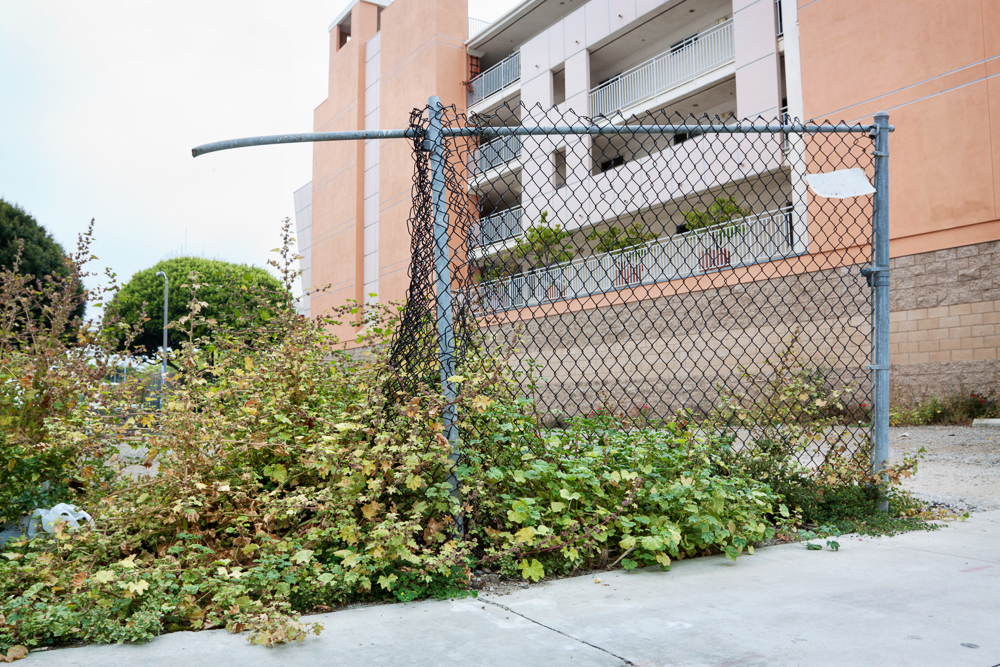 rauch_apartment_homes-43.jpg