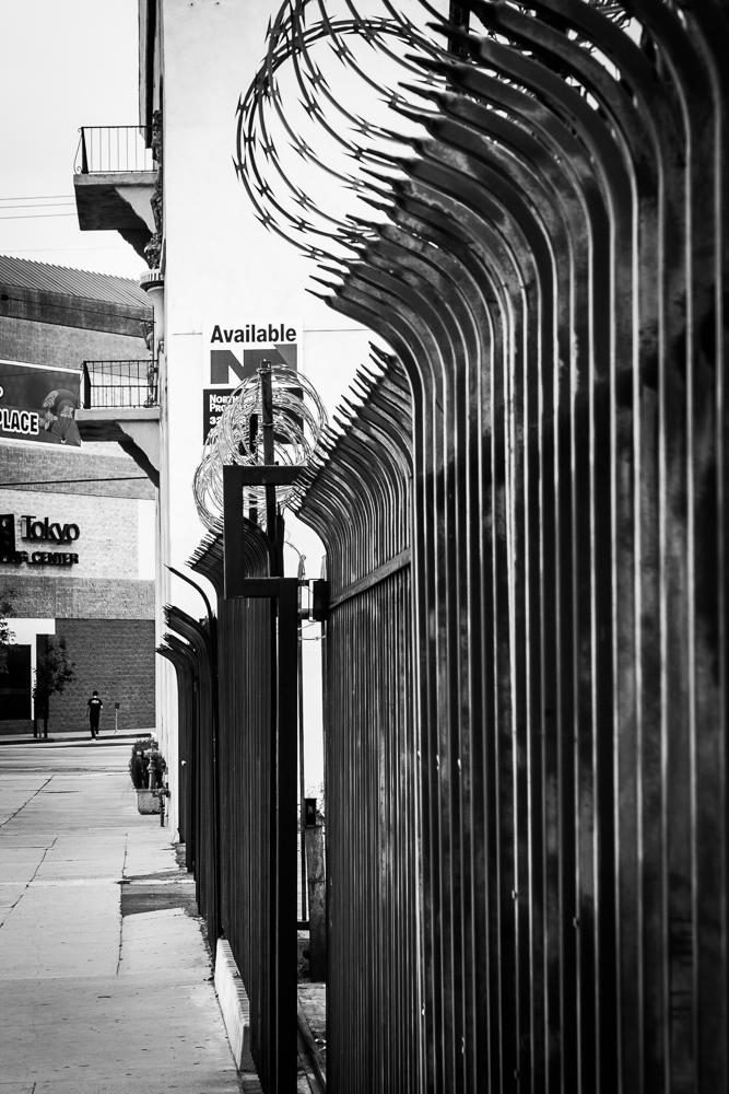 rauch_walk_sanpo-26.jpg