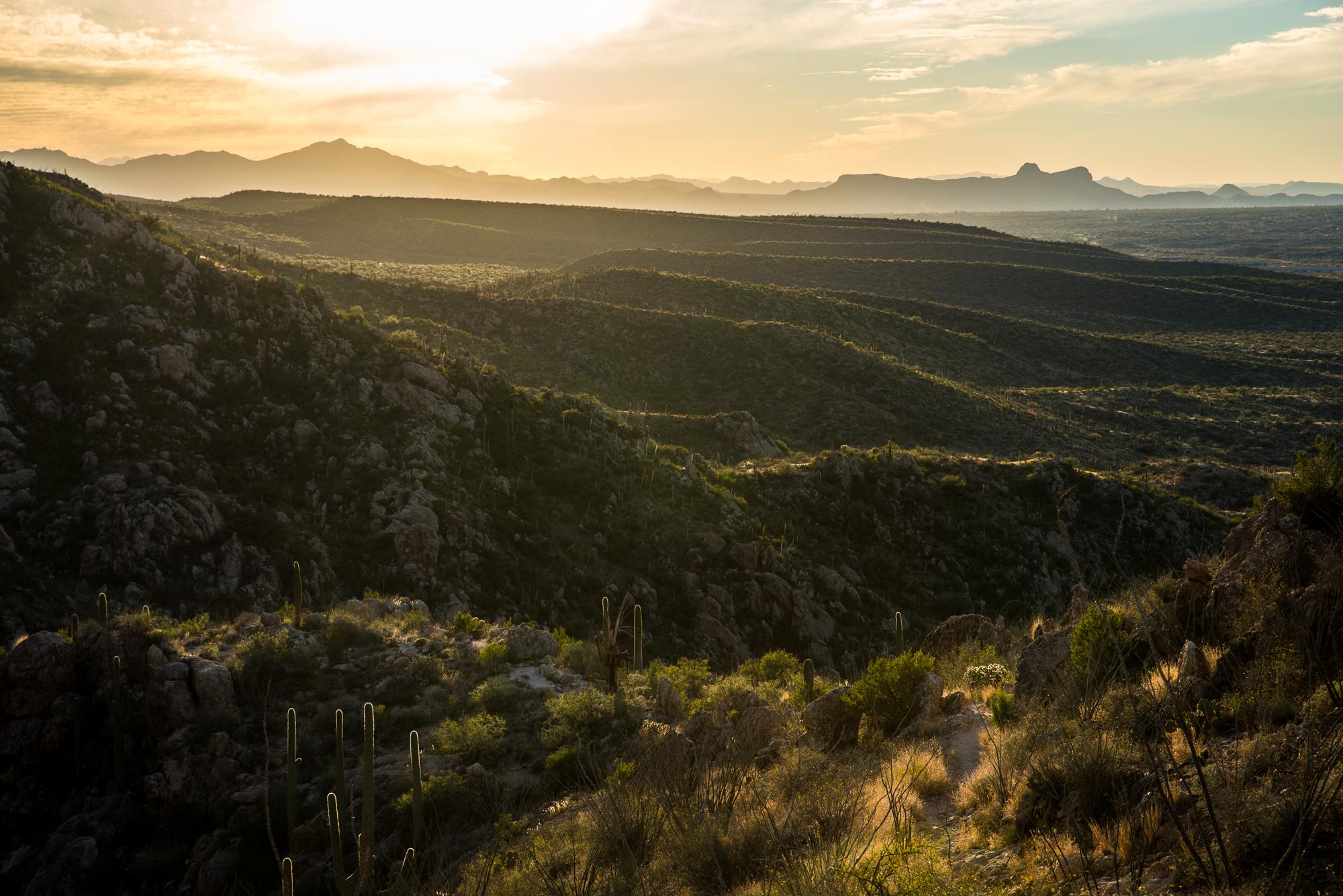 Eron Rauch - Tucson Arizona.jpg