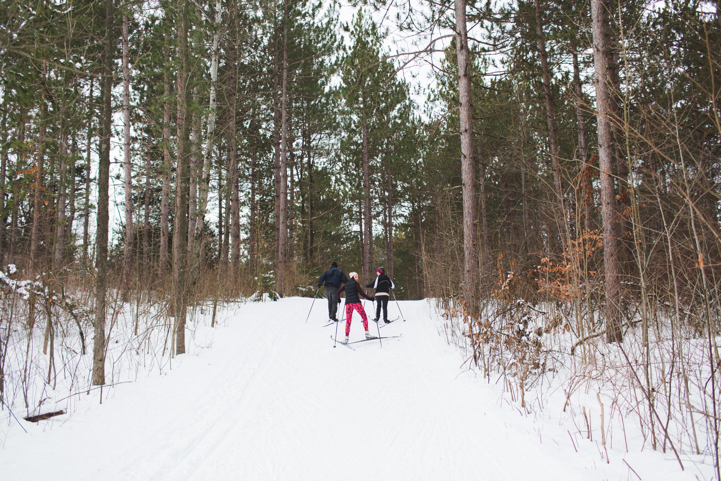 ski_10.jpg