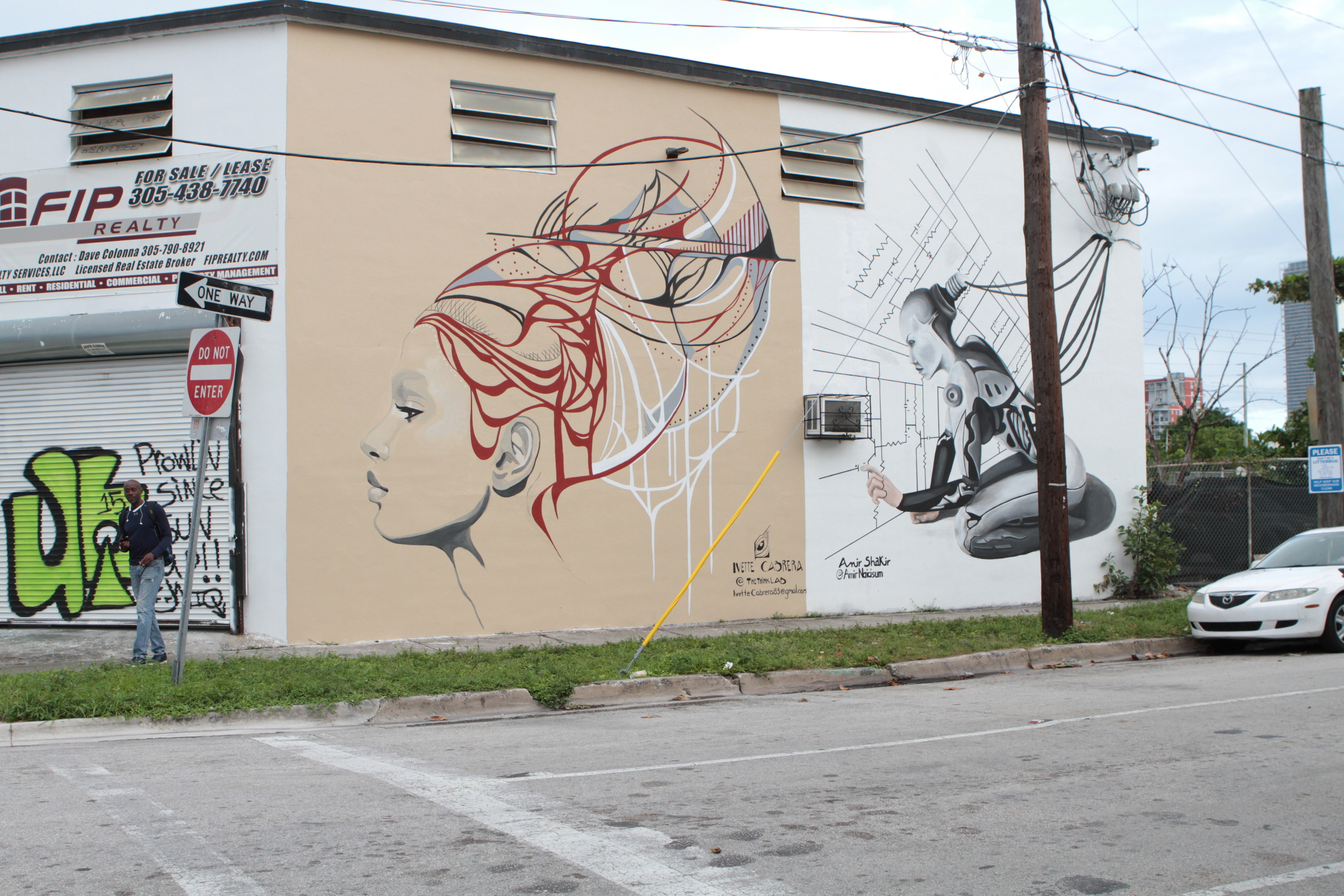wynwood-arts-district-mural-ivette-cabrera-amir-shakir