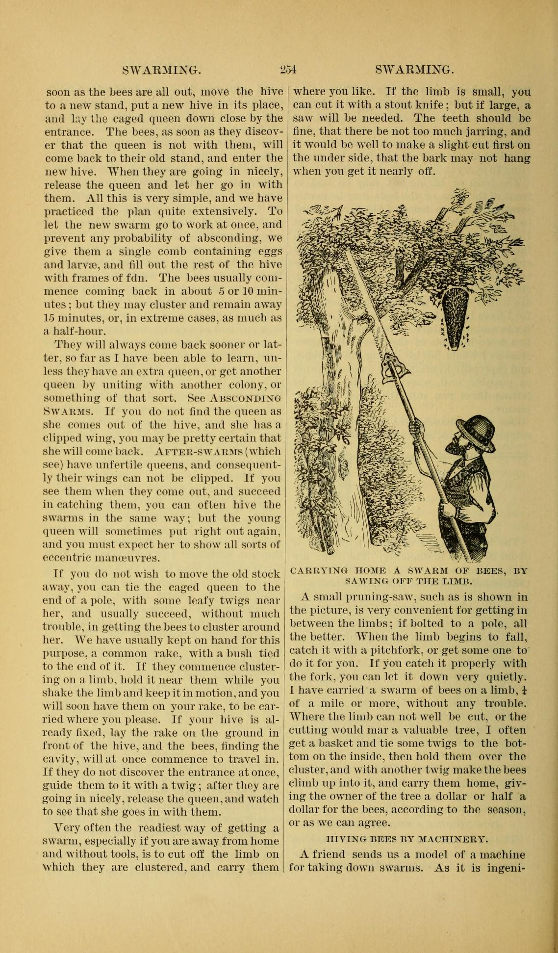 Excerpt from ABC of Bee Culture 1877