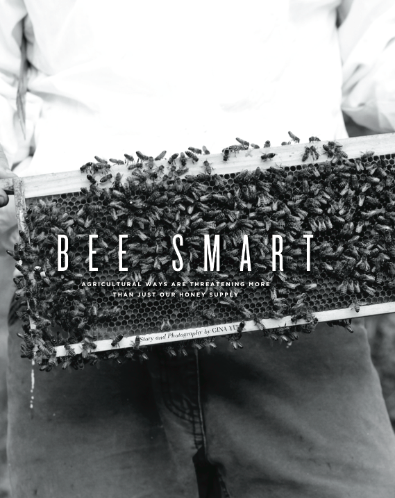 Eide' Magazine - Bee Smart - Sept 2014
