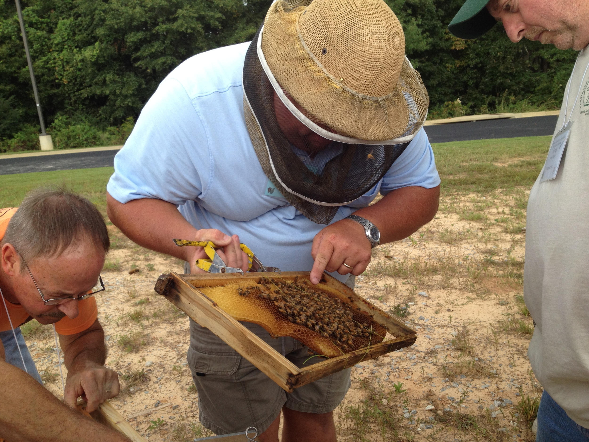 4. Visit another beekeepers hives