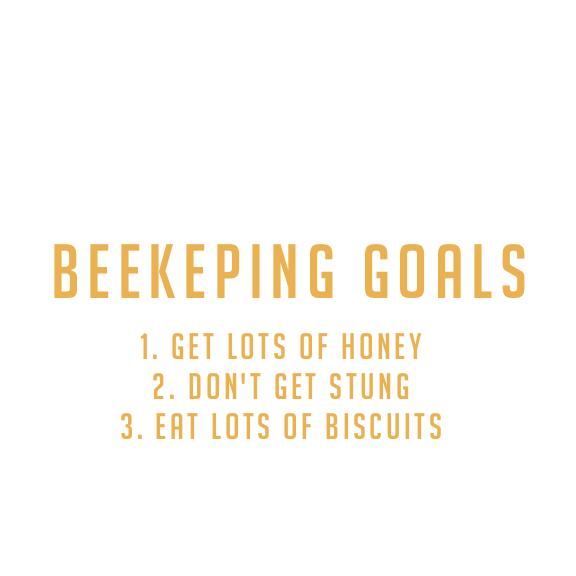 7. Decide on your beekeeping goals