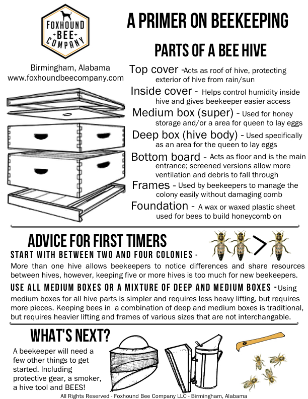 one page primer on beekeeping