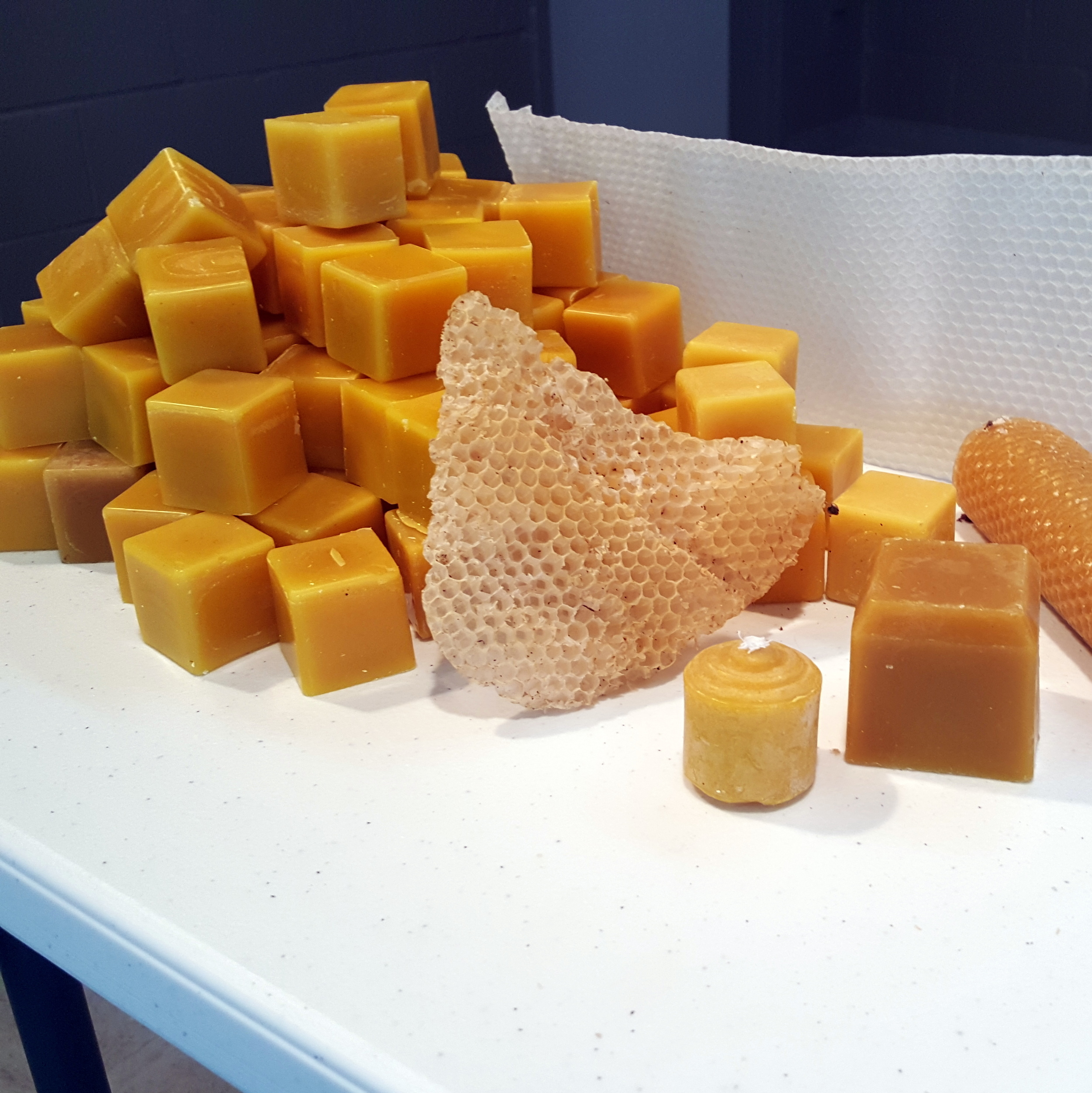 Foxhound Beeswax Cube Candle Foundation Comb
