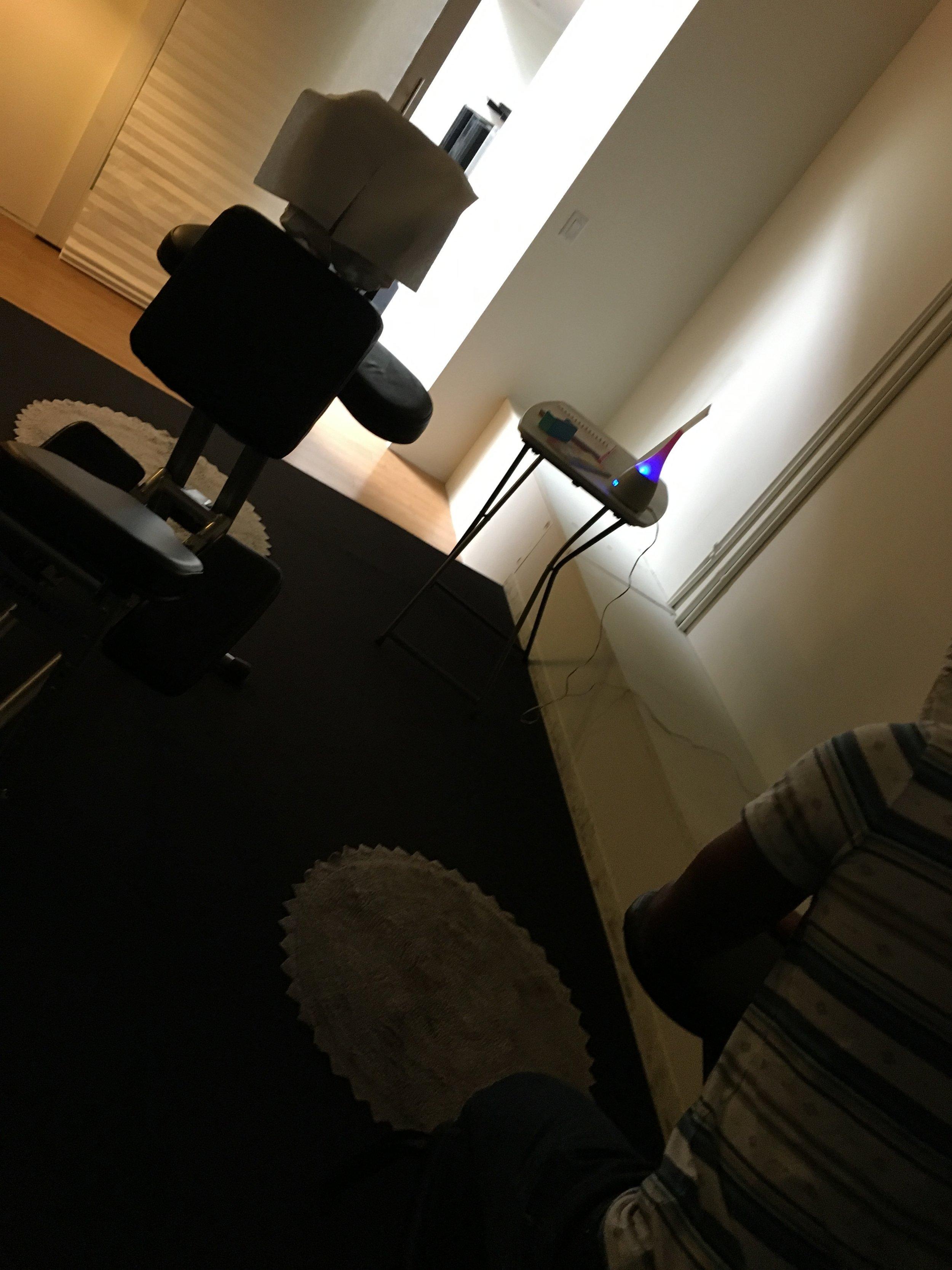 Shade FVX Chair.JPG