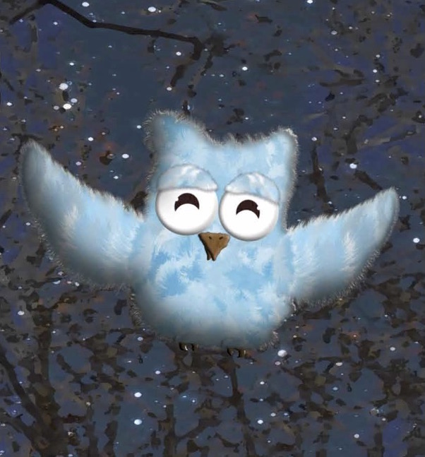 """Illustration from Meghan's Latest Book, """" Owlie Learns to Fly """"!"""