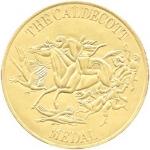 Caldecott-Medal.jpg