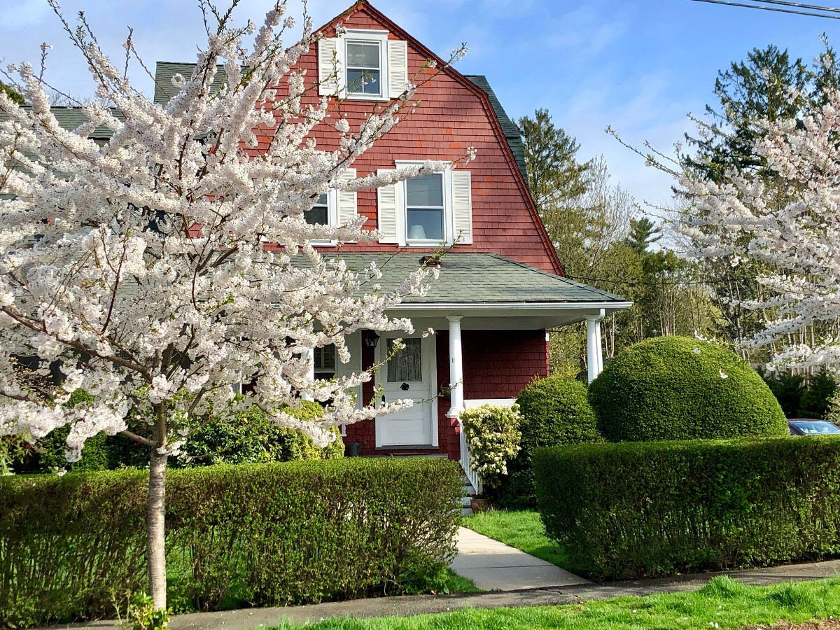 Lindsay Leigh's home with it's mature trimmed shrubbery was lit with a candelabra of blossoms.
