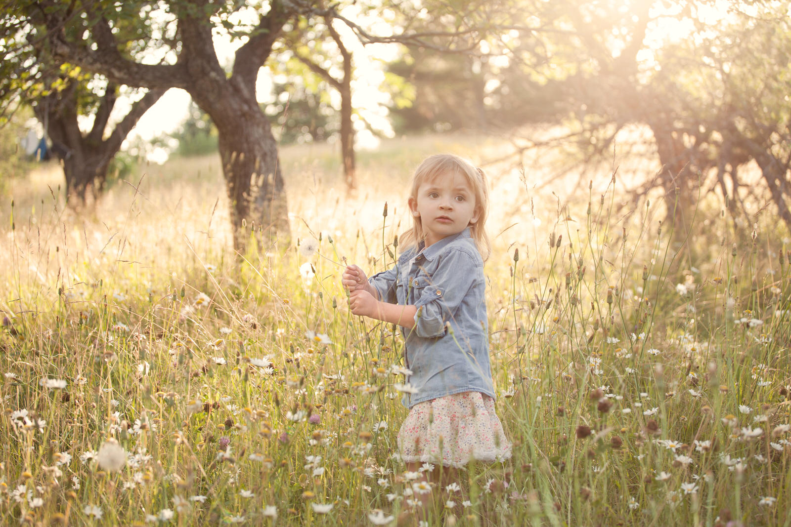 upper-peninsula-photographer-family-children-marquette-michigan-jackie-solomon-007.jpg