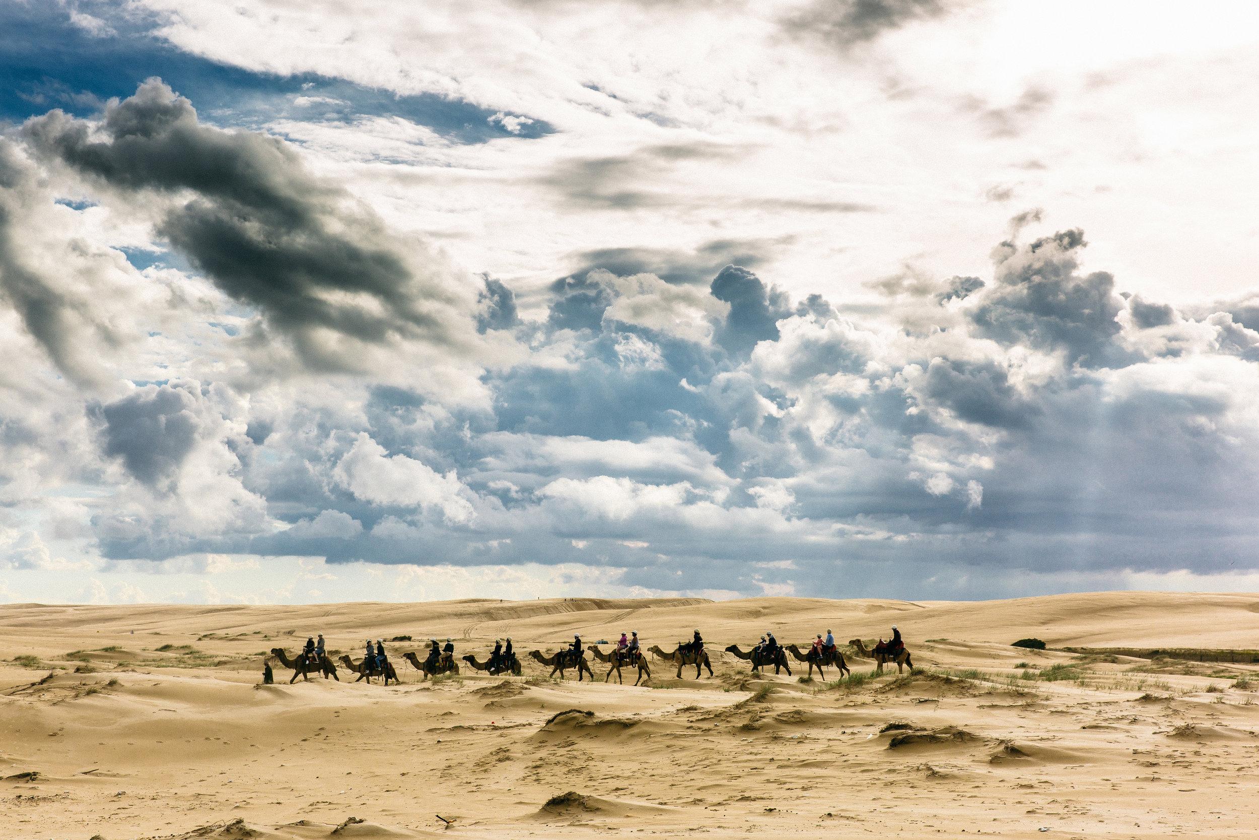 Lachlan-Jordan-Photography-5576.jpg